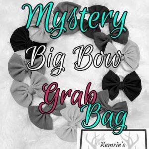 Mystery Big Bow Grab Bag